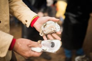 Lowcountry Oyster Festival: Boone Hall Plantation