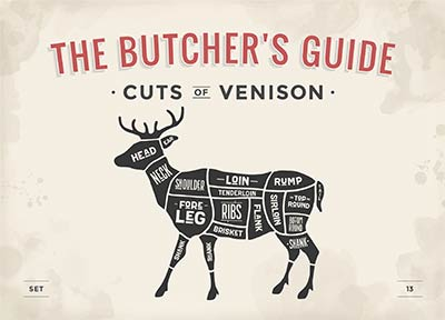 butcher's guide to cuts of venison